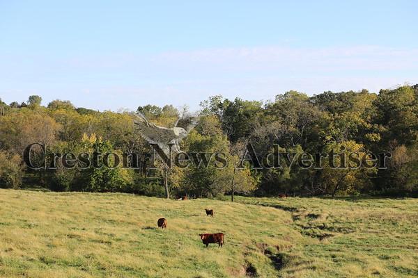 10-06 Rural landscape