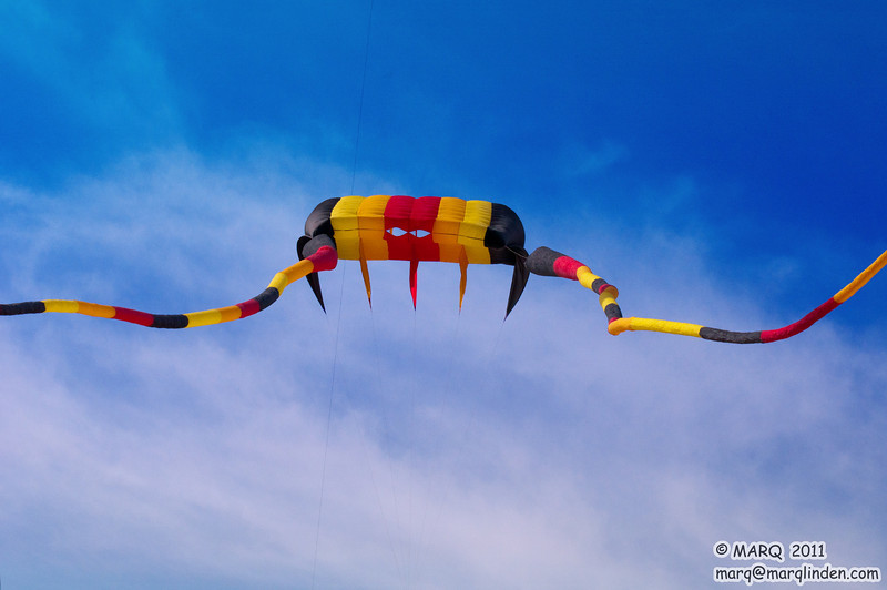 HB Kite Party 2011 #2