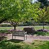 2012, campus, spring