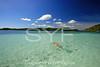Swimming,Antigua