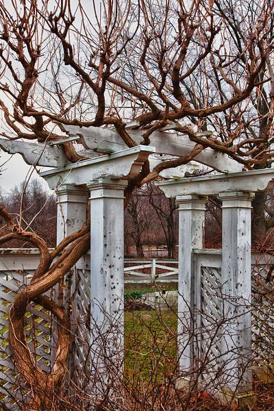 Garden behind Livingston-Backus House, HDR