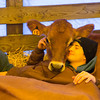 Boy with Calf at Ag Fair