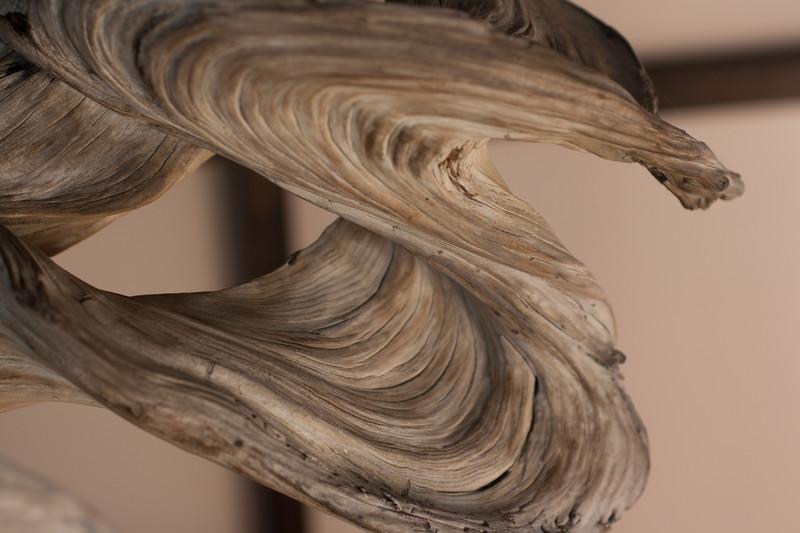 Swirly bonsai
