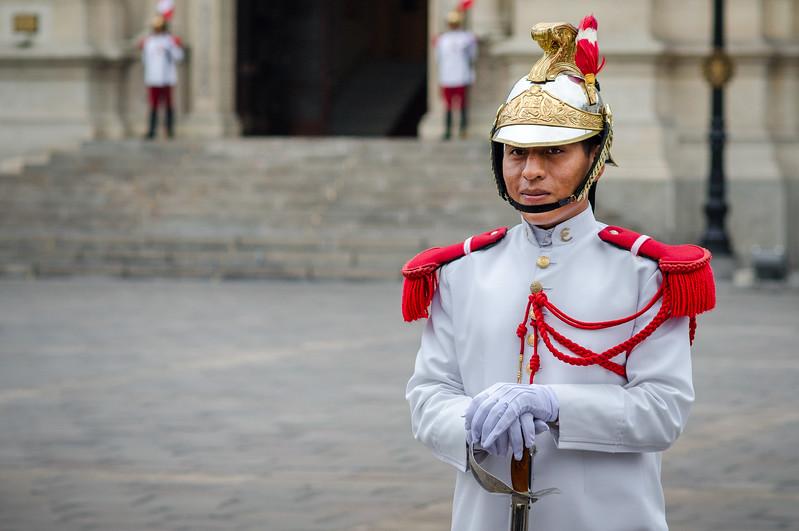 Presidential Infantry