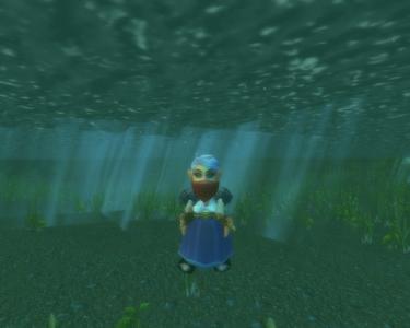 Silki under water