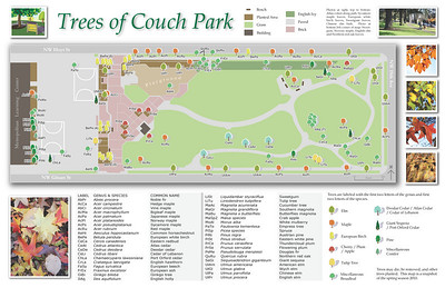 Trees of Couch Park, Side 1