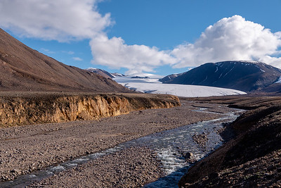 Alexandra Creek and Twin Glacier