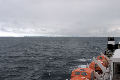 Temporal visitors of Antarctica