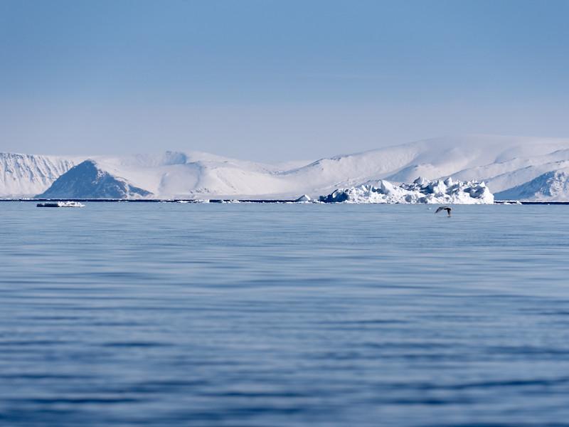 Bylot Island-1020847.jpg