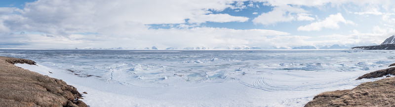 Bylot Island--3.jpg