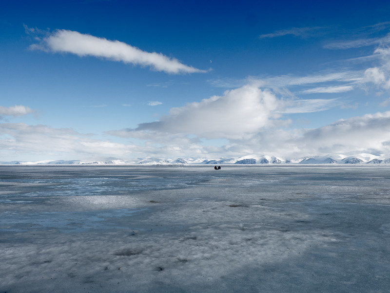 Bylot Island-1030026.jpg