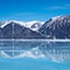 Bylot Island, Ninavut Canada