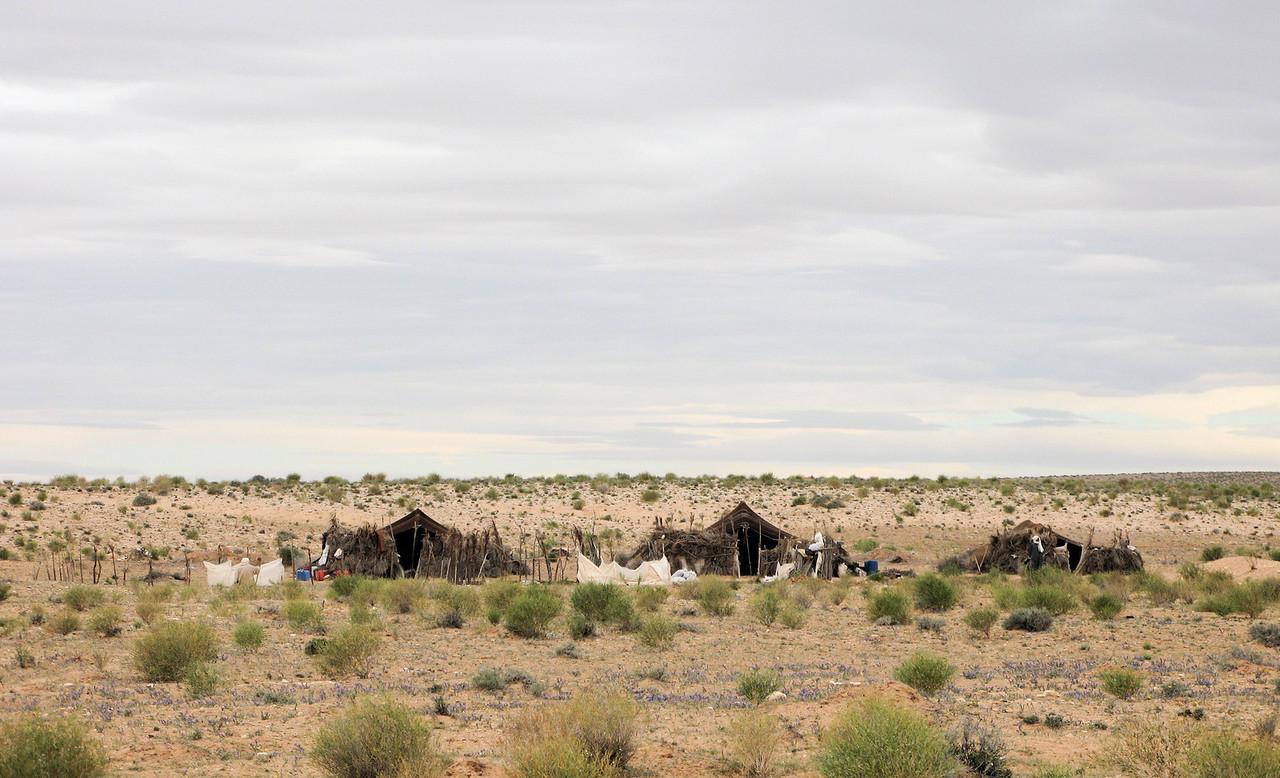 Douz Matmada Bedou tents