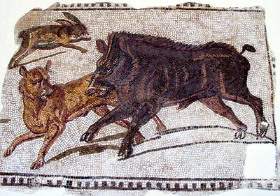 Boar At the Bardo Museum