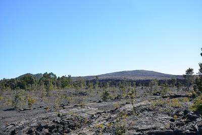 Pu'u Huluhulu and Mauna Ulu