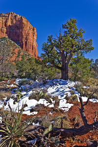 Sedona - Courthouse Butte w/Snow #2