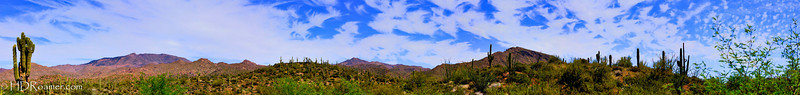Tonto National Forest - A Vista Over Sycamore Creek