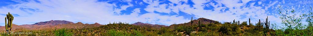 Tonto National Forest - A Vista Over Sycamore Creek