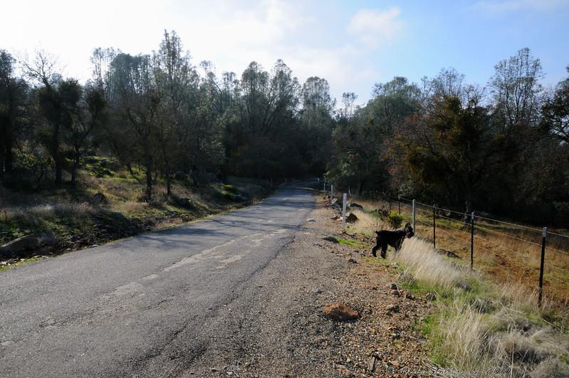 Between Milton and Salt Springs Reservoir