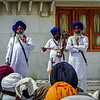 Musicians at the Golden Temple, Amritsar