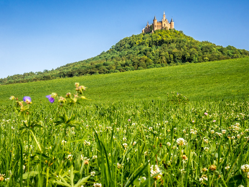 Hohenzollernschloss upon the Meadow, Germany