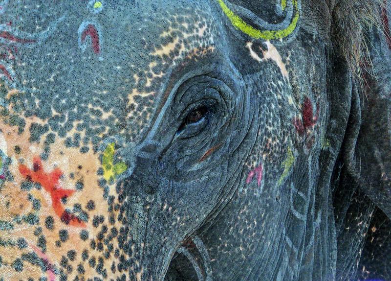 Lakshmi Closeup, Hampi, India