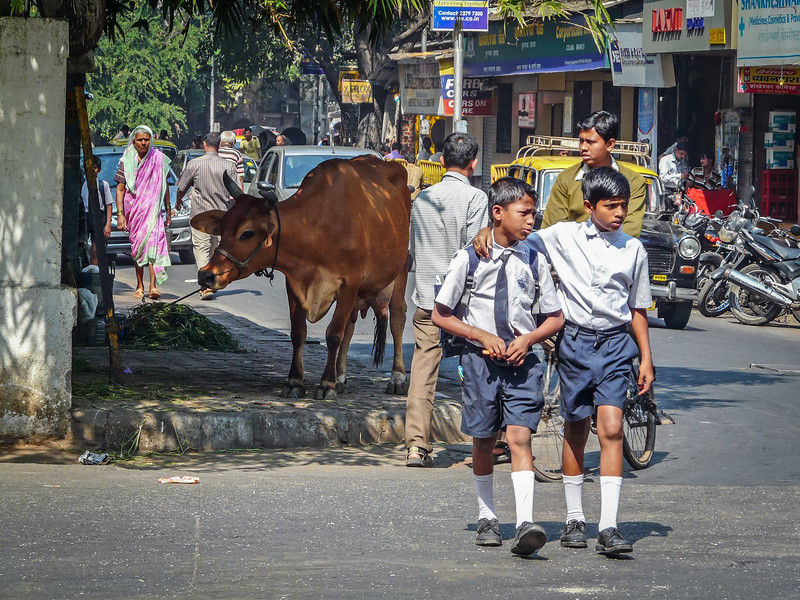 School's Out, Colaba, Mumbai