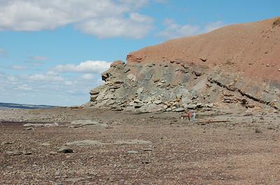 Bay of Fundy at Joggins Fossil Cliffs, Nova Scotia