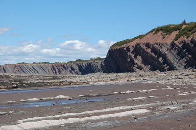 Low Tide at Joggins Fossil Cliffs, Bay of Fundy
