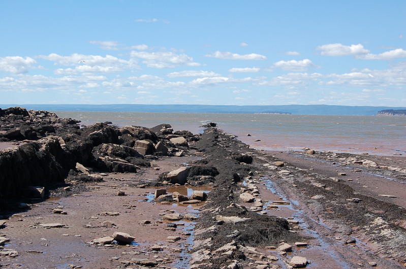 Low Tide at Bay of Fundy at Joggins Fossil Cliffs