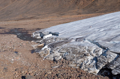 Terminus of Cold Based Glacier