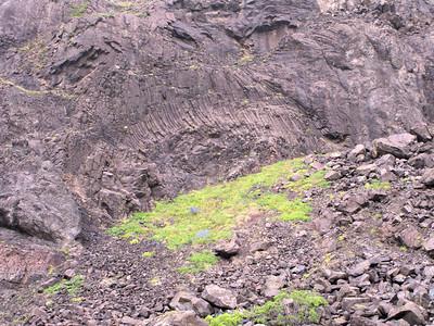 Columnar Basalt / structure Skaftafellajukull