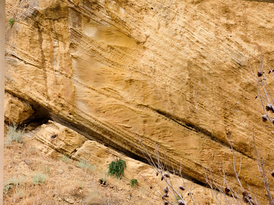 Cross bedded Sandstone