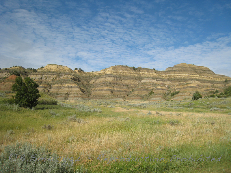 Badlands (Teddy Roosevelt Nat'l Park, N. Dakota)