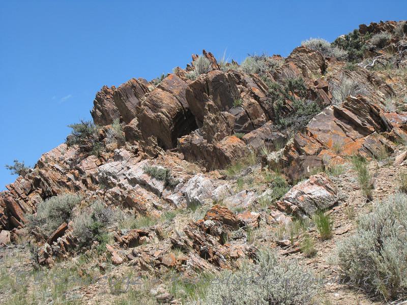 Tilted rock layers (Montana)