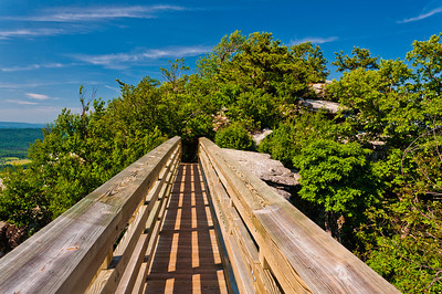 Bridge on Hiking Trail to Big Scholss, George Washington National Forest, Virginia.jpg