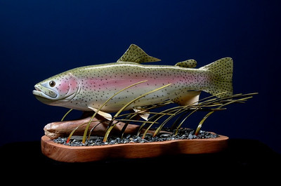 Rainbow Trout-1