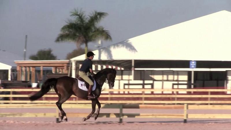 GM Horsemastership 2011