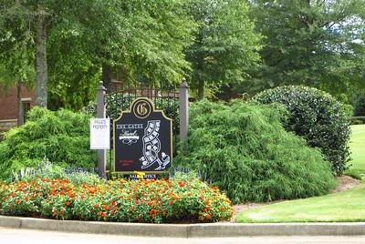The Gates At Laurel Springs Suwanee Georgia (6)