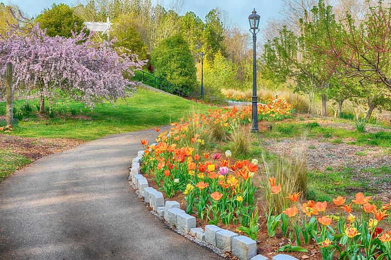 Path at the Botancail Garden