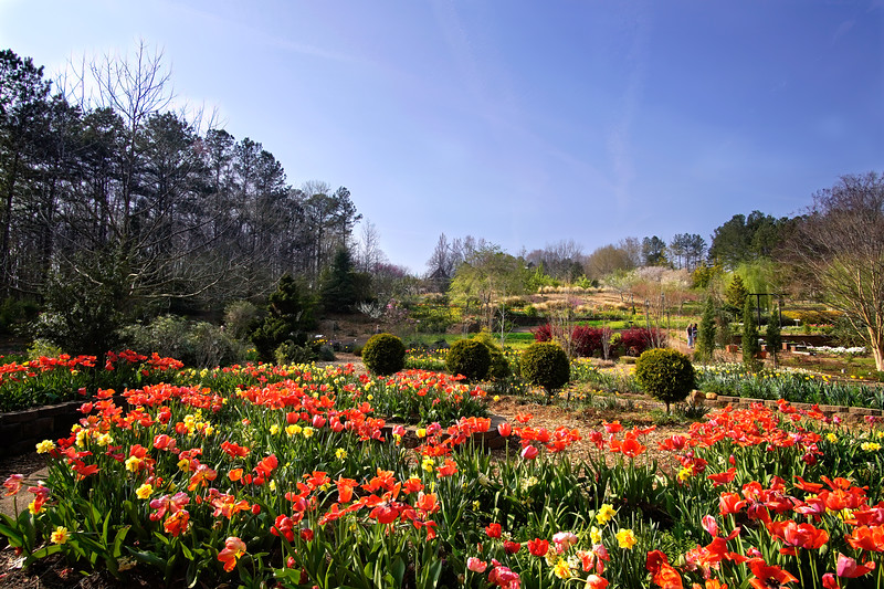Broad View of the Botanical Garden in March