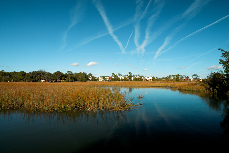 Wilmington Island, GA (Chatham County) December 2011