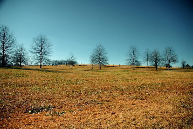 Sandy Creek Park, GA (Clarke County) January 2010