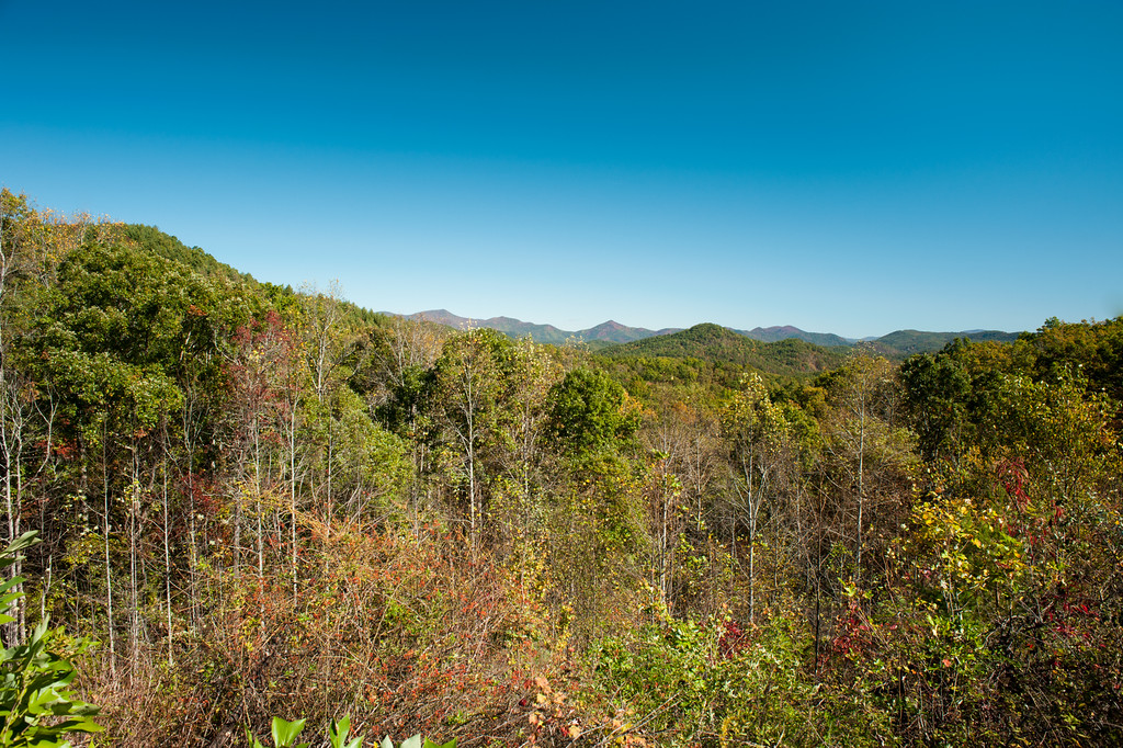 Rabun County (GA) October 2016