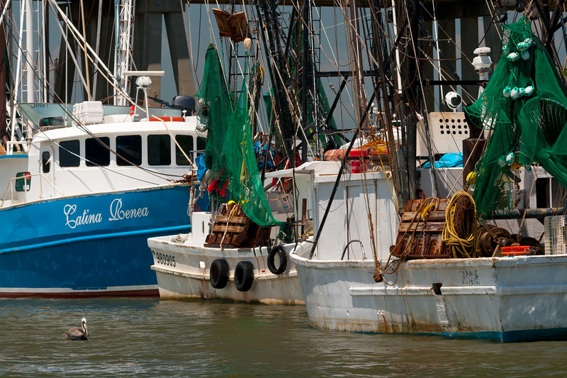 Fishing boats moored on the shores of the Savannah River. Tybee Island, GA<br /> <br /> GA-080627-0082