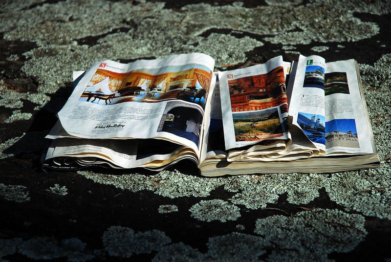 An old magazine lies on the granite outcrop at the Casulon Plantation near Good Hope (Walton County) February 2009
