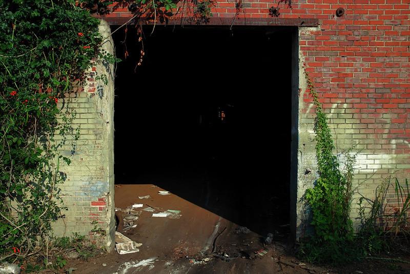 Athens, GA (Clarke County) July 2008
