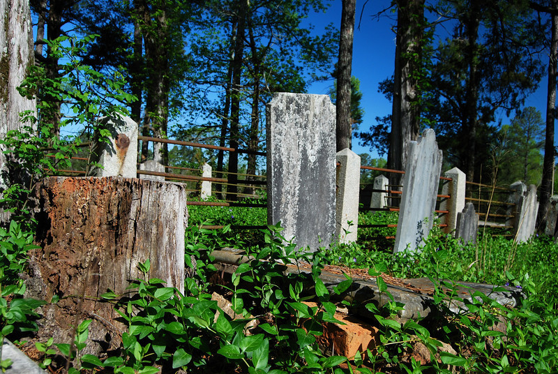 Mt.Zion Church cemetery, Hancock County (GA) 2008