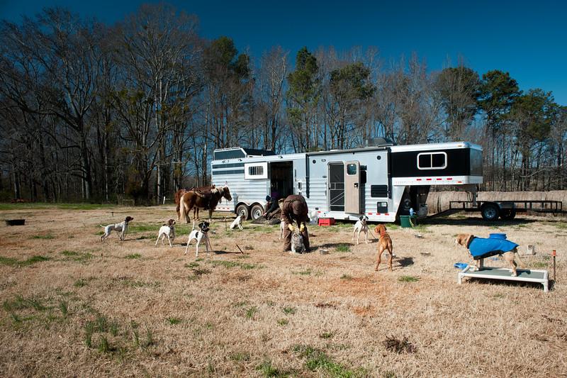 Hampton, GA (Henry County) February 2016