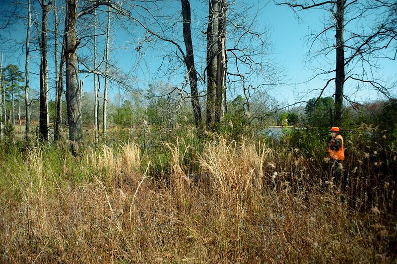 Jersey, GA (Walton County) March 2014